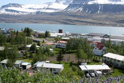 Frá Reyðafirði.