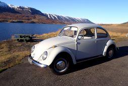 VW Bjalla af árgerðinni 1967.