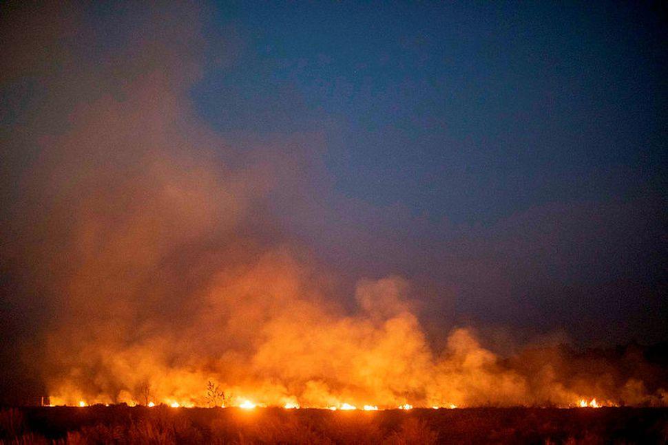 Eldar loga glatt í Mato Grosso-ríki Brasilíu í gær.