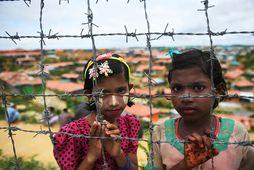 Rohingja-stúlkur í flóttamannabúðum í Bangladess. Rohingjar minnast þess nú að ár er frá því búrmíski …