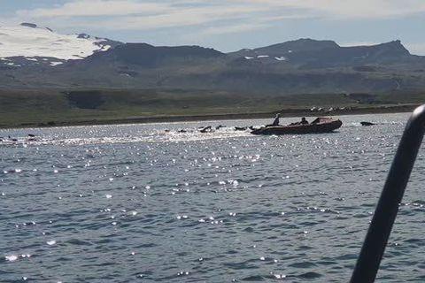 Myndskeið frá íþróttadeild