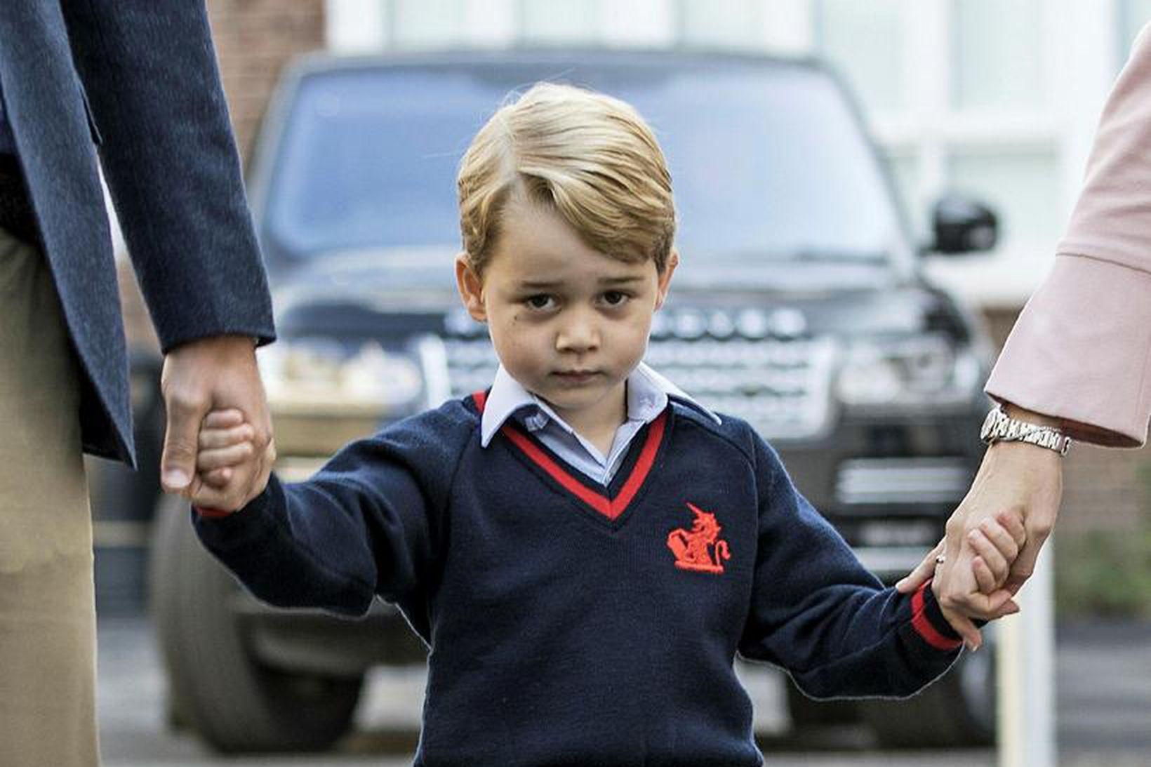 Georg prins varð sorgmæddur yfir nýjustu heimildarmynd David Attenborough.