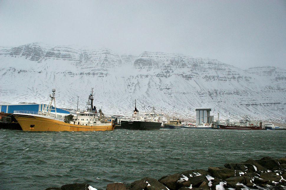 Norðfjarðarhöfn. Mynd úr safni. Norðfjarðarhöfn er ein stærsta fiskihöfn landsins. ...