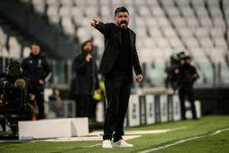 Gennaro Gattuso er ekki í viðræðum við Tottenham.