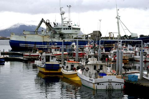 Fisheries are one of Iceland's most important industries.