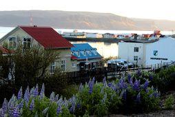 Patreksfjörður. Mynd úr safni.