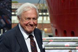 Sir David Attenborough varar við hættuástandi í baráttunni gegn loftslagsvánni.