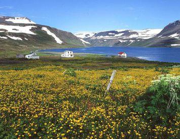 Mennirnir höfðust við í neyðarskýli í Hornvík á Hornströndum. Myndin er frá Hesteyri.