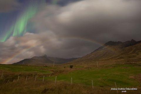 The photograph was taken by Icelander Jónína Óskarsdóttir in Fáskrúðsfjörður.