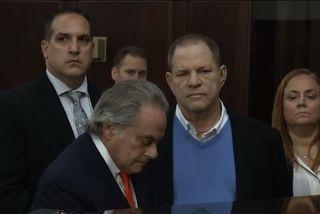 Weinstein laus gegn tryggingu