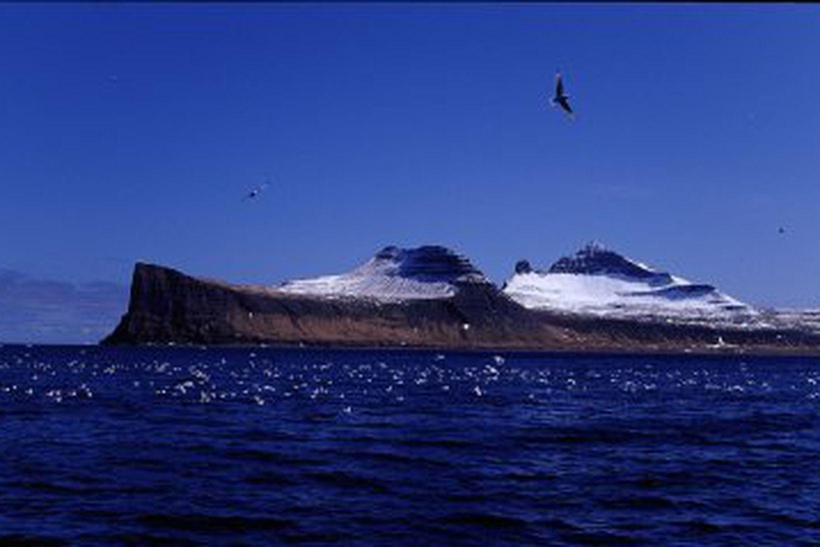 Hornbjarg og Hornvík.