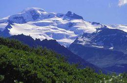 Svínafellsjökull in summer.