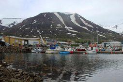 Það sem olli því þó að fyrirtækið skilaði hagnaði voru talsverðar fjármunatekjur og gengishagnaður.