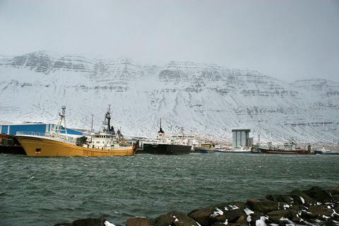 Kolmunnaskipin hafa legið í Norðfjarðarhöfn. Mynd úr safni.