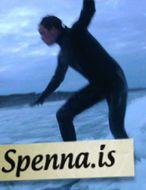 Surfar á alíslenskum brettum.