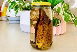 Notaðu bananavatn til að næra plönturnar þínar.