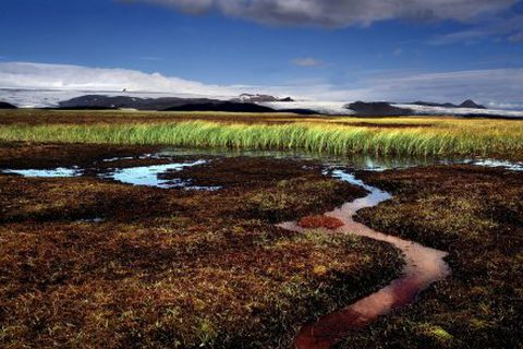 Icelandic nature has changed much in the last decades due to global warming.