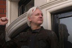Tíu ára lögfræðibarátta Assange