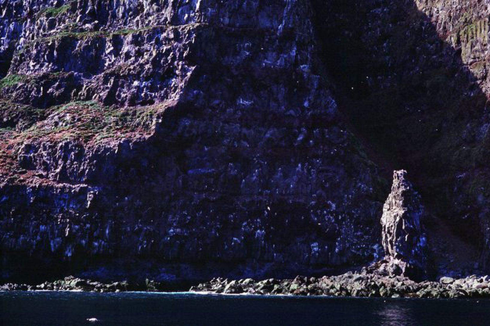 Við Látrabjarg.