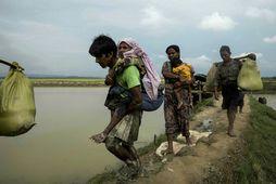 Rohingjar flýja yfir landamærin frá Búrma til nágrannaríkisins Bangladess.