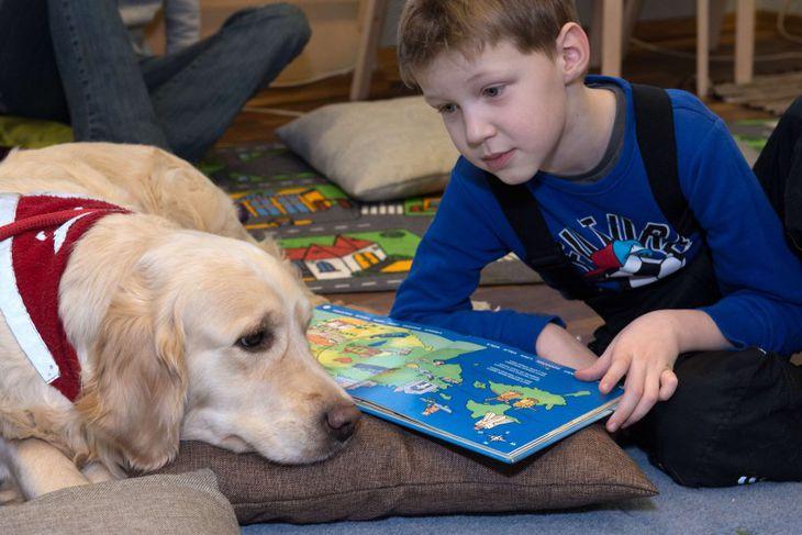 Kevin, 5 ára, les fyrir þreyttan hund á bókasafni í Eistlandi. Hundar eru notaðir til ...