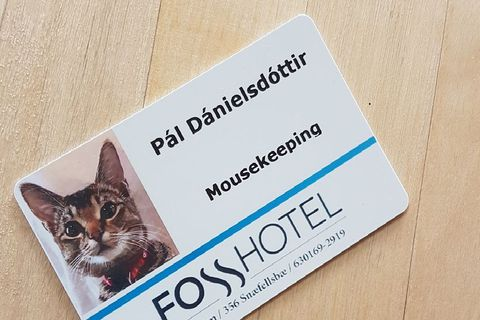 The photo of the staff card that went viral.