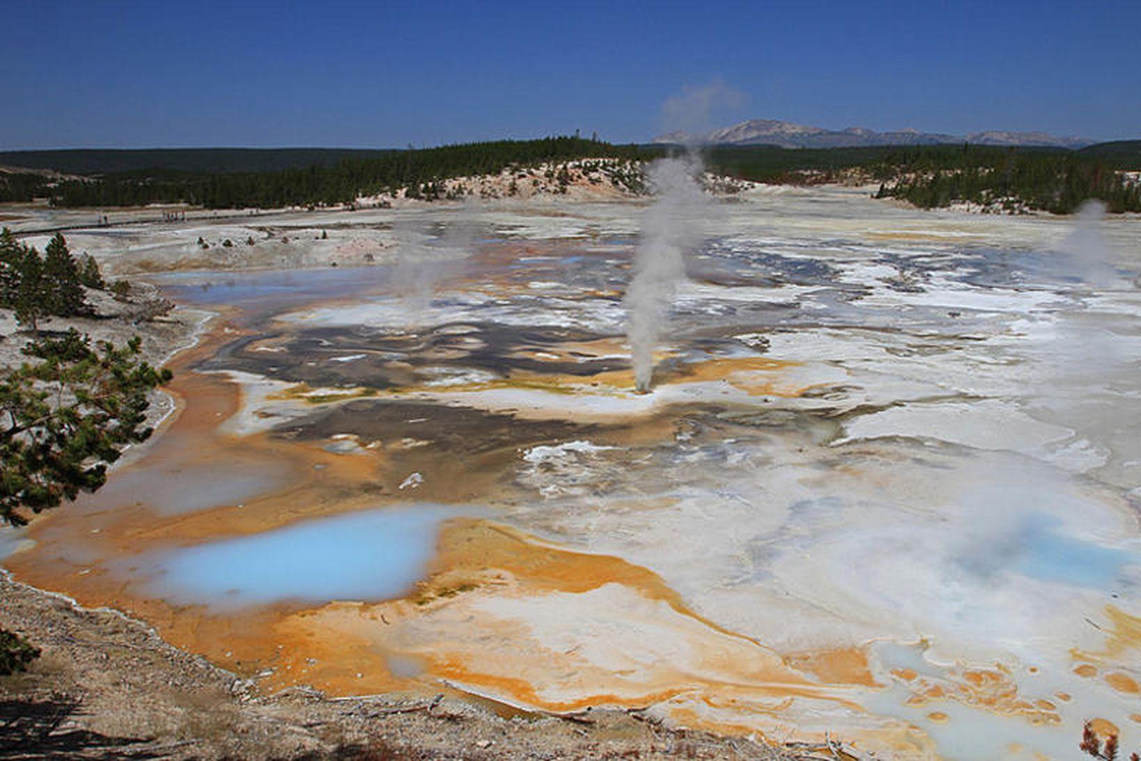 Hverasvæði í Yellowstone.