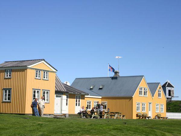 From Vigur in Ísafjarðardjúp.