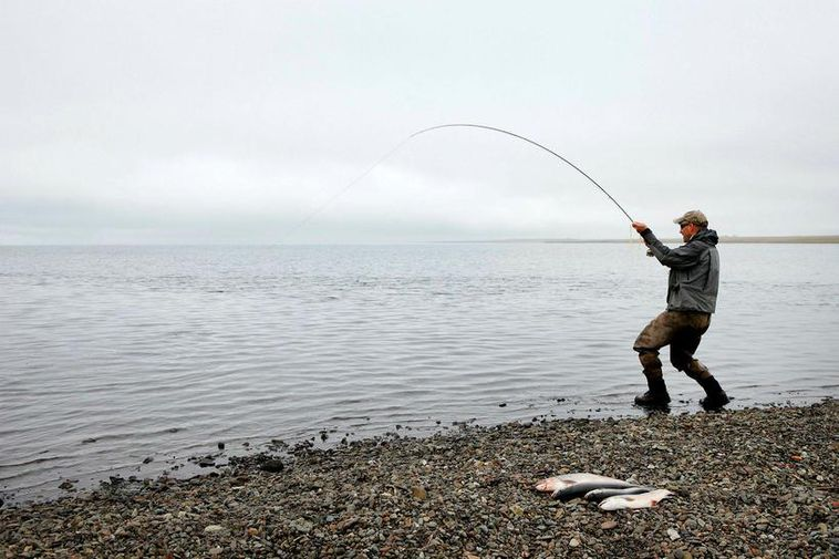 A fisherman catching Arctic char in a lake in Iceland.