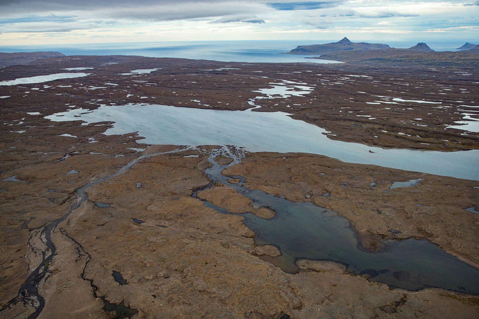 Til stendur að reisa Hvalárvirkjun í Árneshreppi á Ströndum.