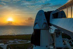 Falcon 9-eldflaugin ásamt geimferjunni Crew Dragon á skotpallinum í Flórída.