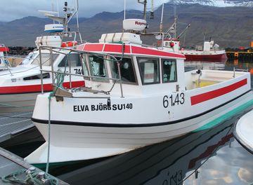 Enok NK-017