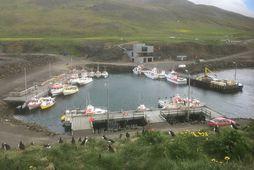 Höfnin í Borgarfirði eystra.