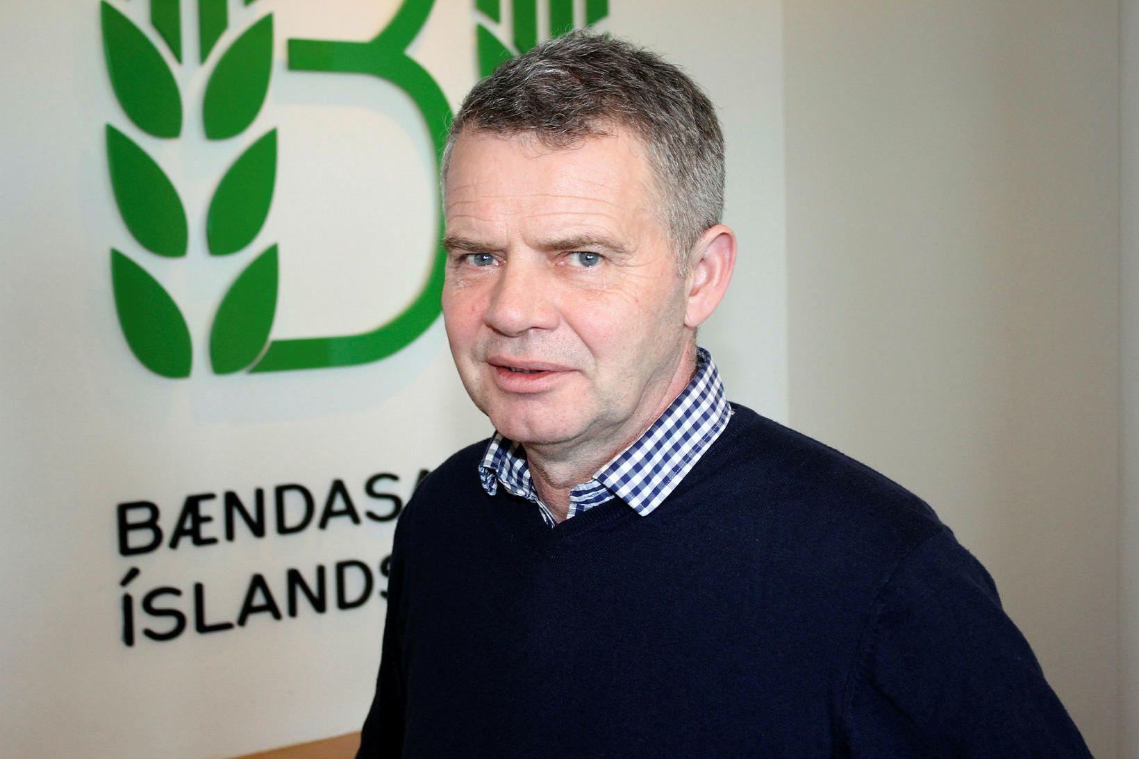 Gunnar Þorgeirsson formaður Bændasamtka Íslands.
