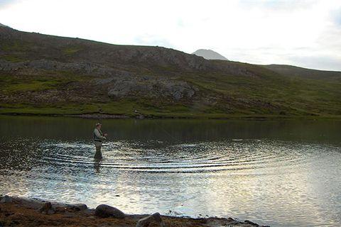 Fjarðará river