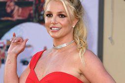 Britney Spears stefnir á að eyða meiri tíma með sonum sínum á nýjum áratug.