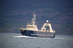 Gullver NS-12 við Hjalteyri.