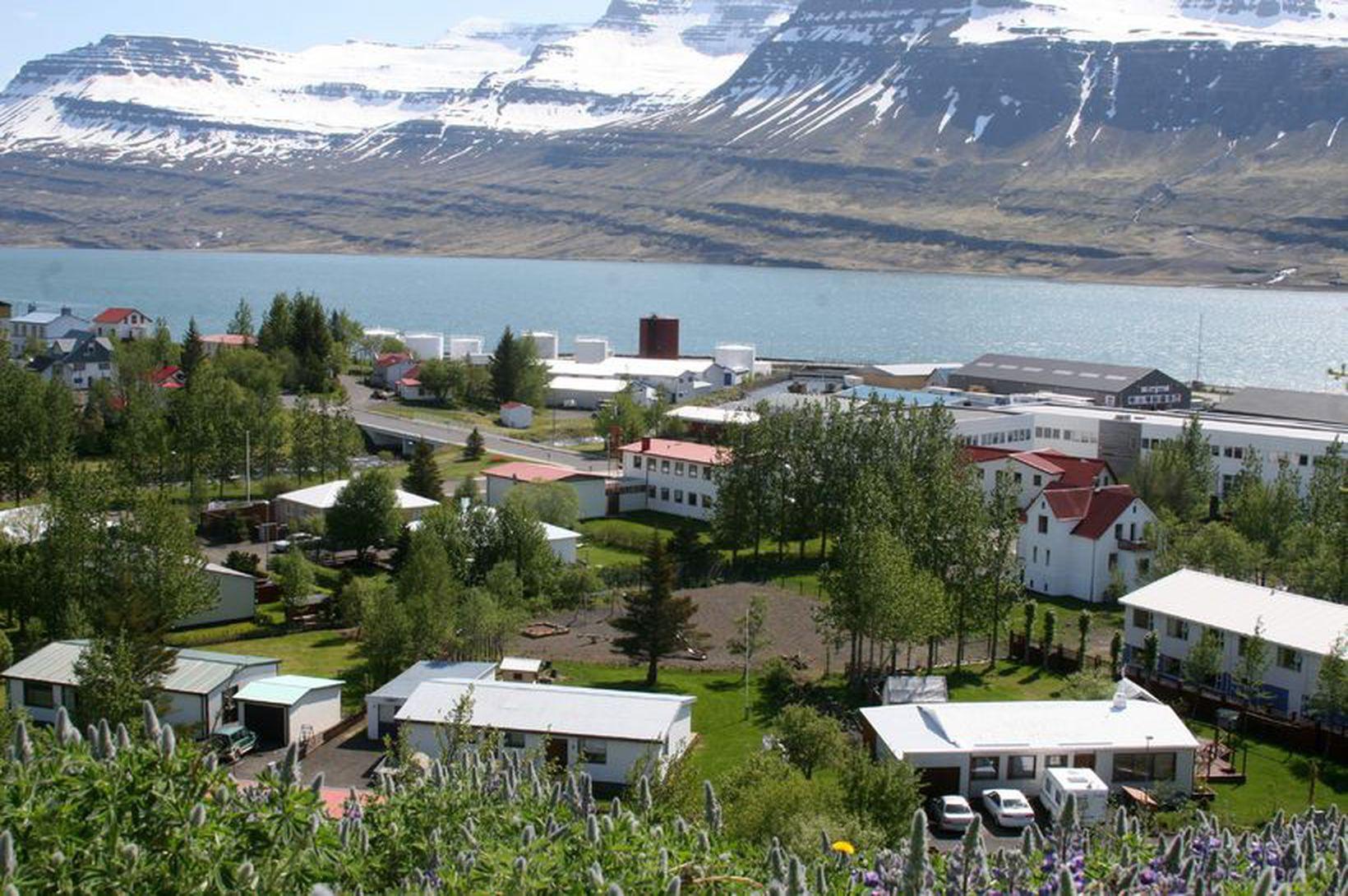 Grunur um smit í grunnskóla á Reyðarfirði