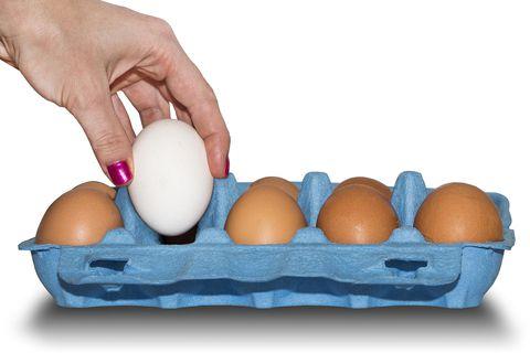 Finnur þú mun á hvítum eða brúnum eggjum?