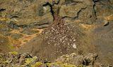 Talið er að kvikugangur geti hafa myndast undir jarðskjálftasvæðinu á Reykjanesskaga.