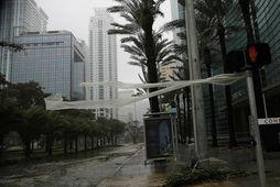 Það er bálhvasst í borginni Miami á Flórída þar sem þessi mynd var tekin fyrr …
