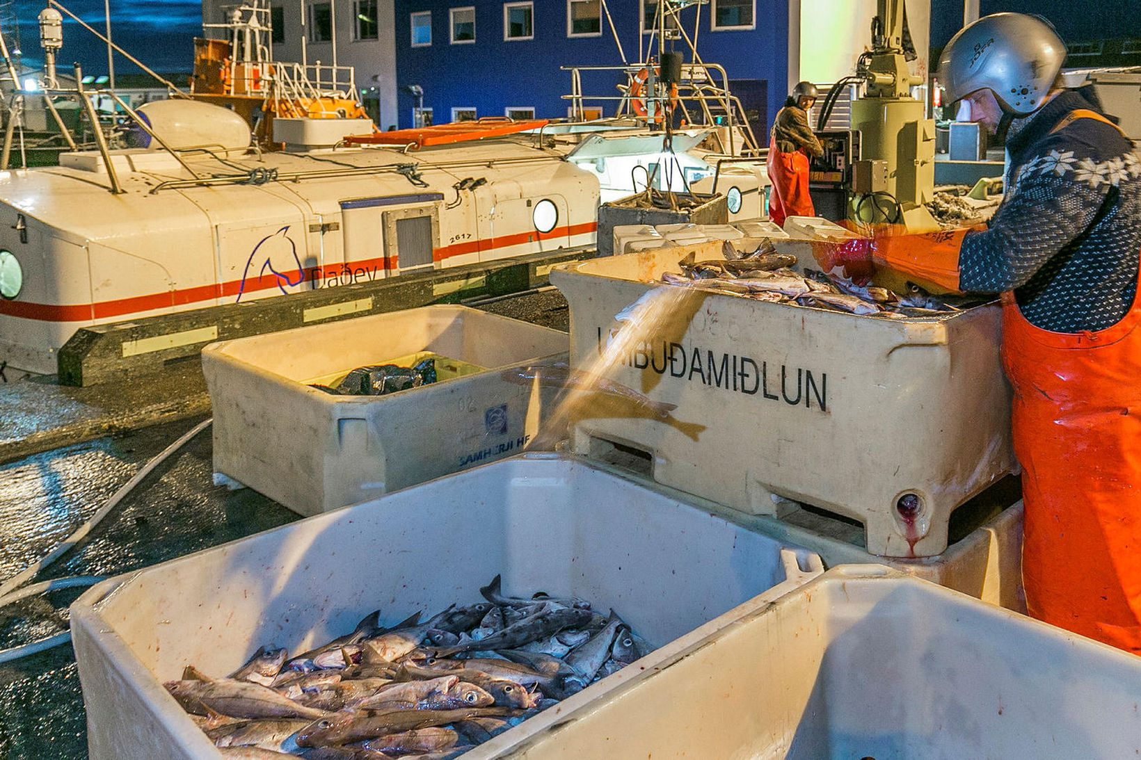 Löndun í Reykjavíkurhöfn. Sala á fiskimörkuðum hefur verið meiri það …