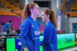 Bríet Sif Hinriksdóttir og Sara Rún Hinriksdóttir leika saman á ný en nú með Haukum.