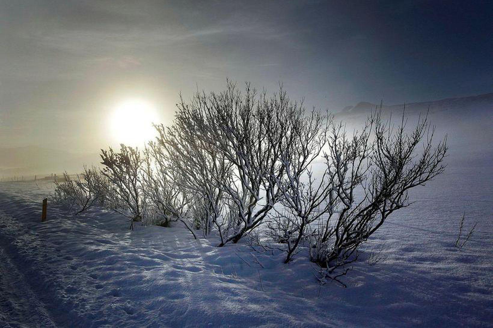 Frost verður á bilinu 2 til 17 stig í dag.