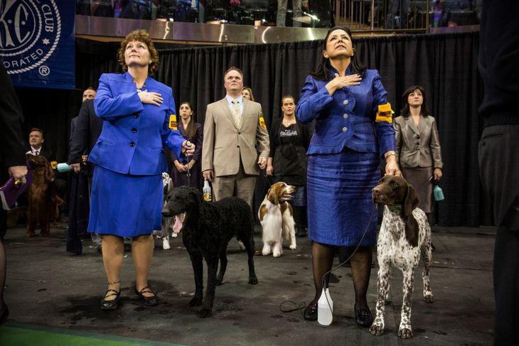 Hundar og eigendur þeirra standa kyrrir undir þjóðsöngnum á Westminster hundasýningunni.