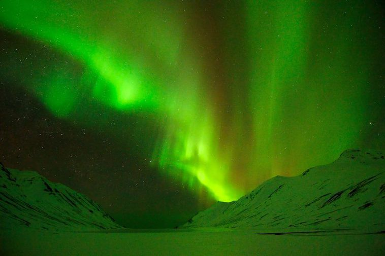 1200 tourists in 24 coaches went hunting for the northern lights yesterday.