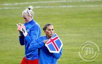 Ísland - Svíþjóð - Landsleikur