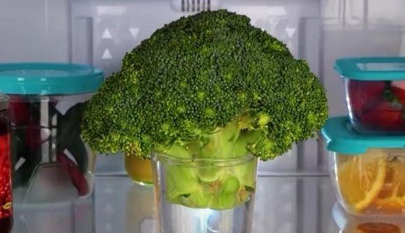 Best geymda leyndarmálið um brokkolí