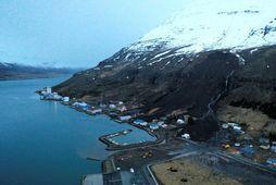 Frá Seyðisfirði eftir skriður sem féllu þar í desember.