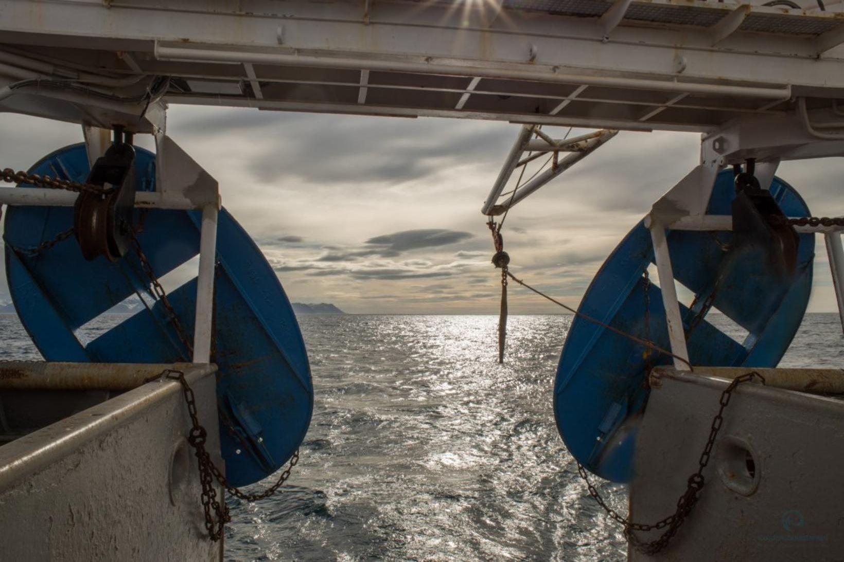 Árleg stofnmæling botnfiska hófst í gær og eru fjögur skip …